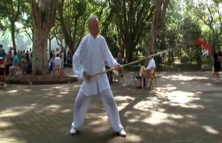 百年公园里的武术家