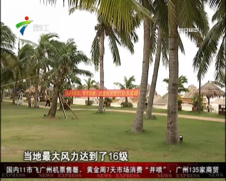 茂名:旅游景区开始修复  三天内有望完全开放