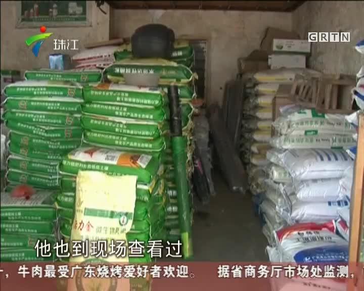 茂名:百亩晚稻为何大幅减产?