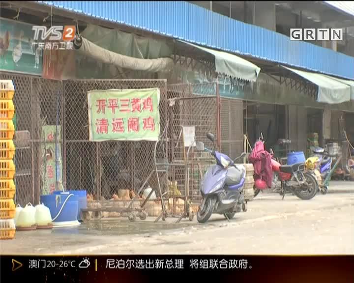 江门:蓬江、江海、新会市场今起禁售活禽