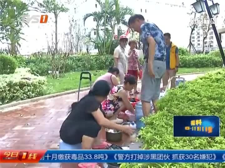 """湛江抗击""""彩虹""""一个月系列报道:八方驰援  救灾复产创""""湛江速度"""""""