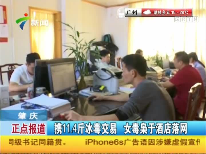 肇庆:携11.4斤冰毒交易  女毒枭于酒店落网