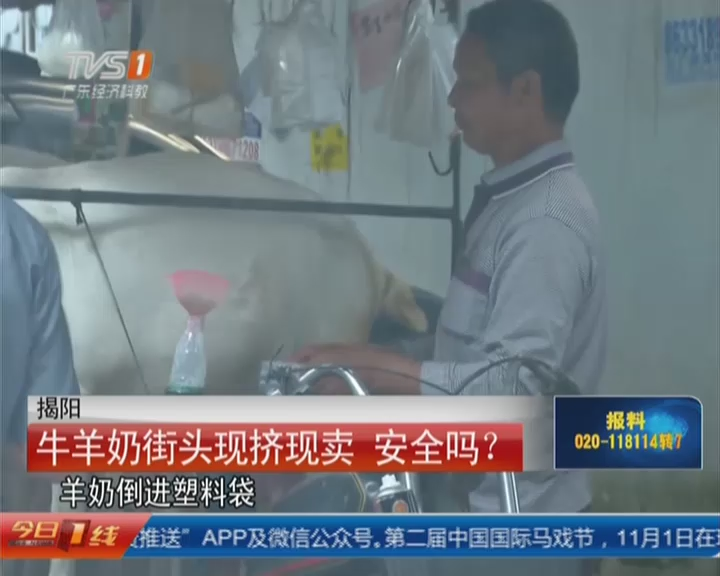 揭阳:牛羊奶街头现挤现卖  安全吗?