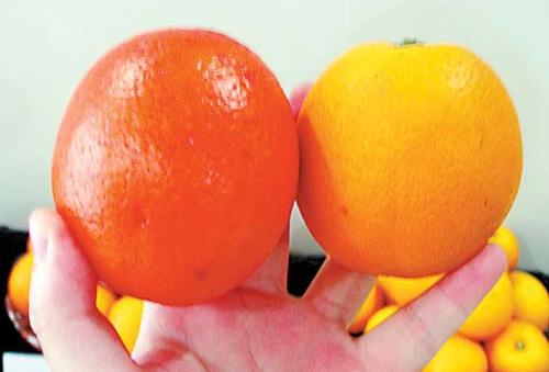 橙子有没有染色,用它一测就知道!