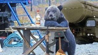 """俄罗斯""""巨熊""""是否会报复土耳其"""