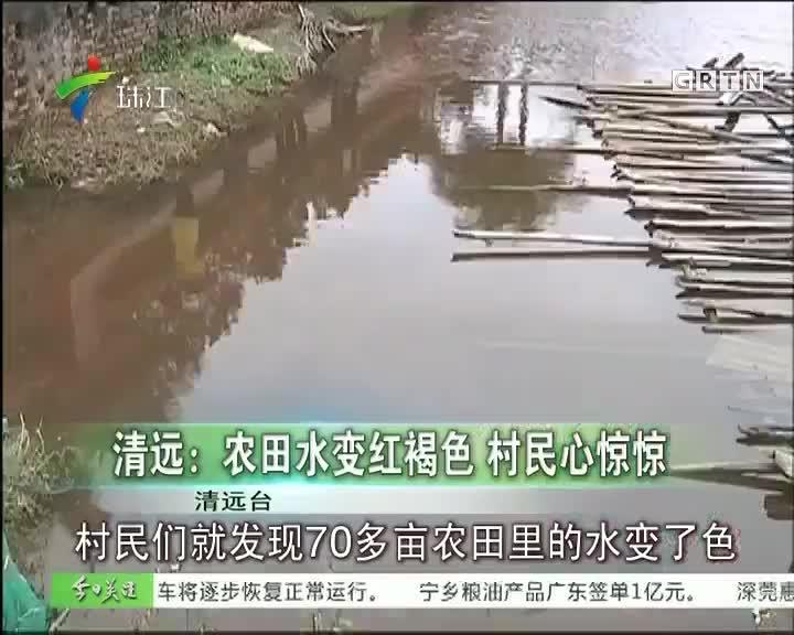清远:农田水变红褐色 村民心惊惊