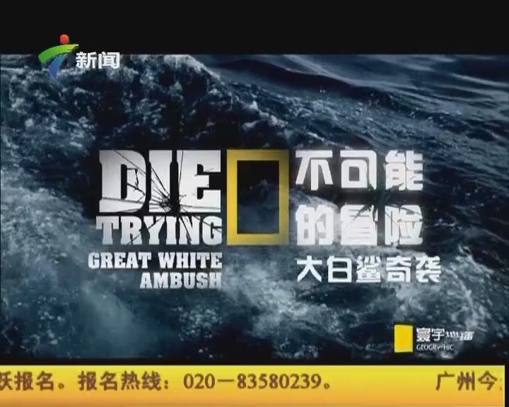 不可能的冒险——大白鲨奇袭