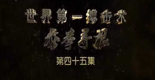 世界第一搏击术——泰拳寻根(45)