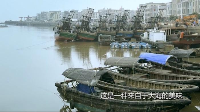 湛江遂溪江洪镇——江洪渔港