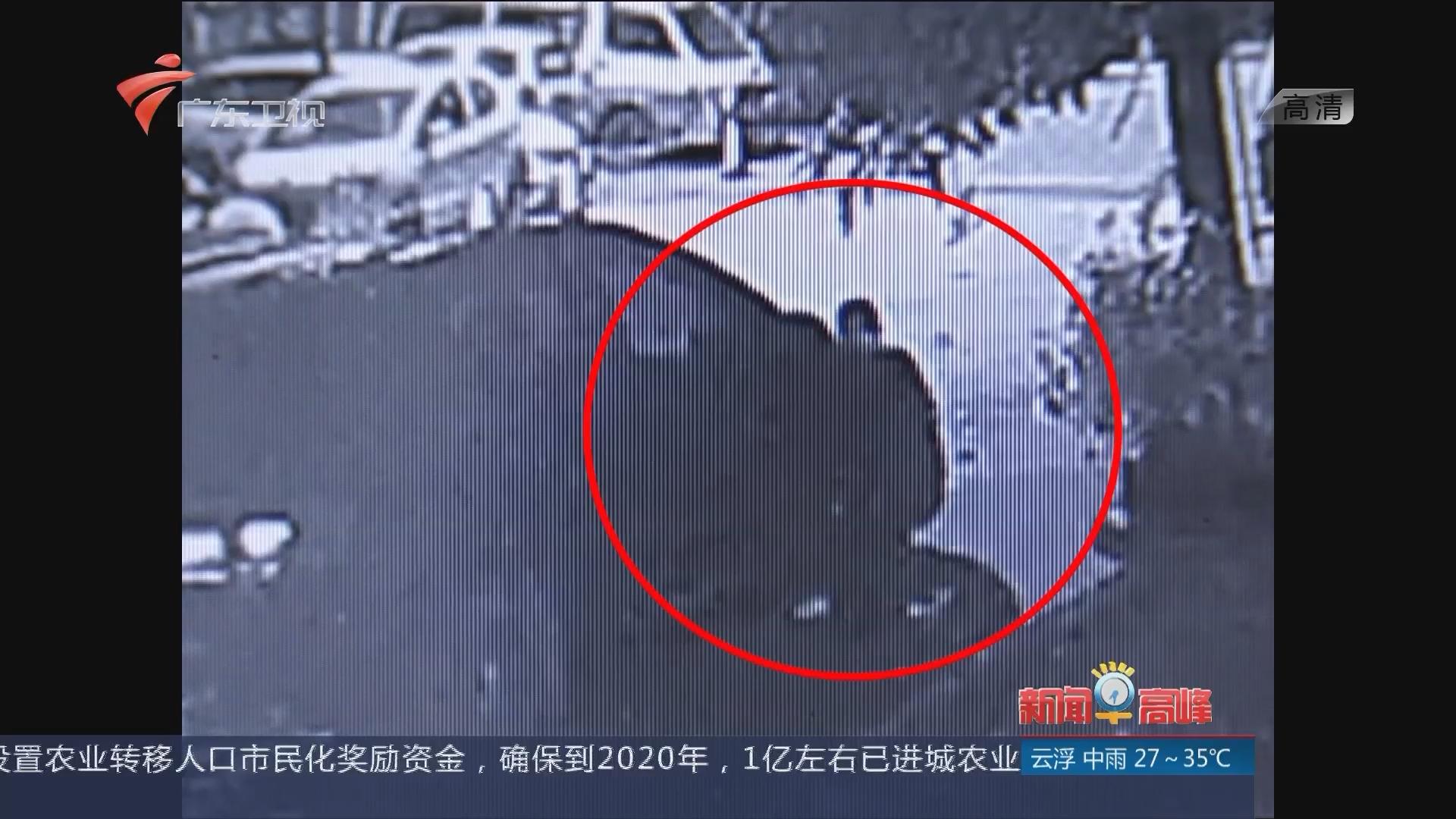 """广州:""""车牌大盗""""一夜作案五起 偷车牌竟还留电话"""