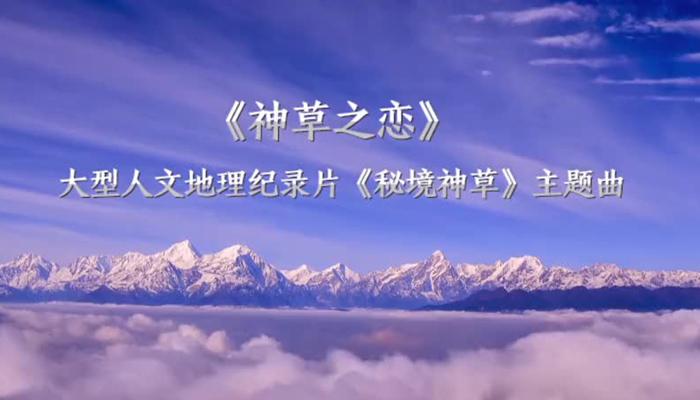 孙楠 王晓锋联手!广东卫视《秘境神草 》主题曲 《神草之恋》网络首发