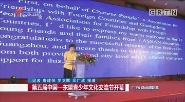 第五届中国——东盟青少年文化交流节开幕