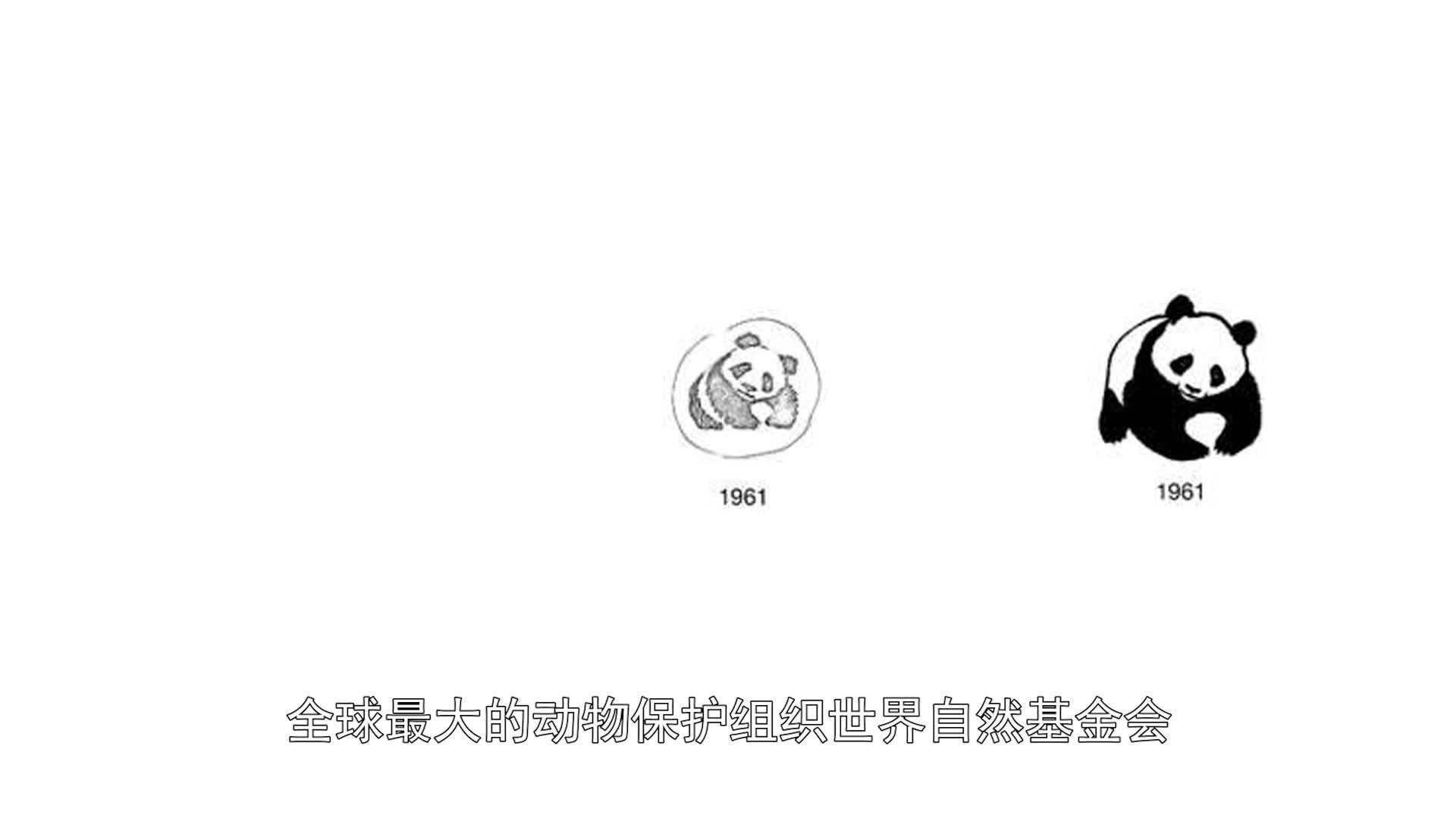 国家相册第五十七集《熊猫回家路》