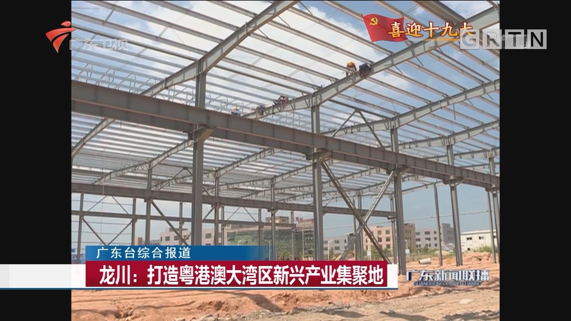 龙川:打造粤港澳大湾区新兴产业集聚地