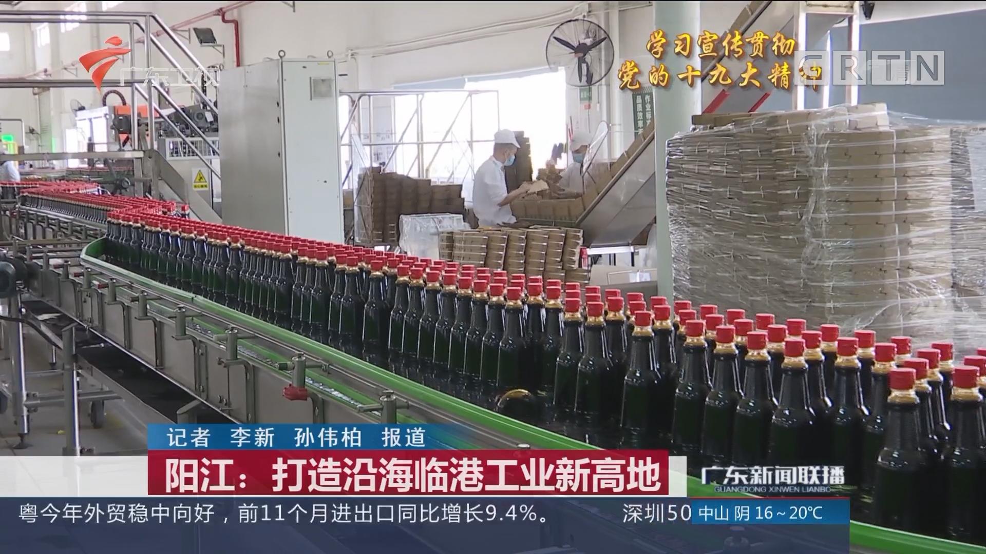 阳江:打造沿海临港工业新高地