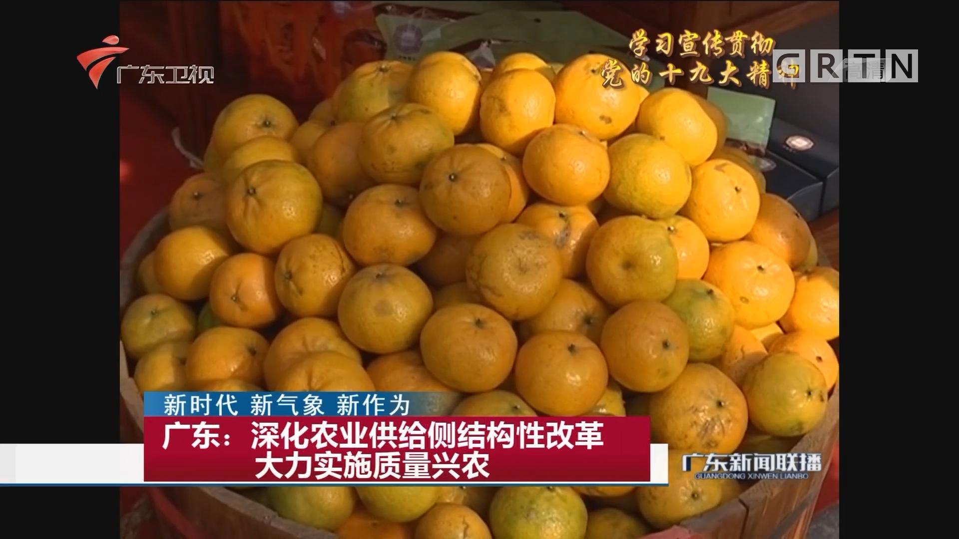 广东:深化农业供给侧结构性改革 大力实施质量兴农