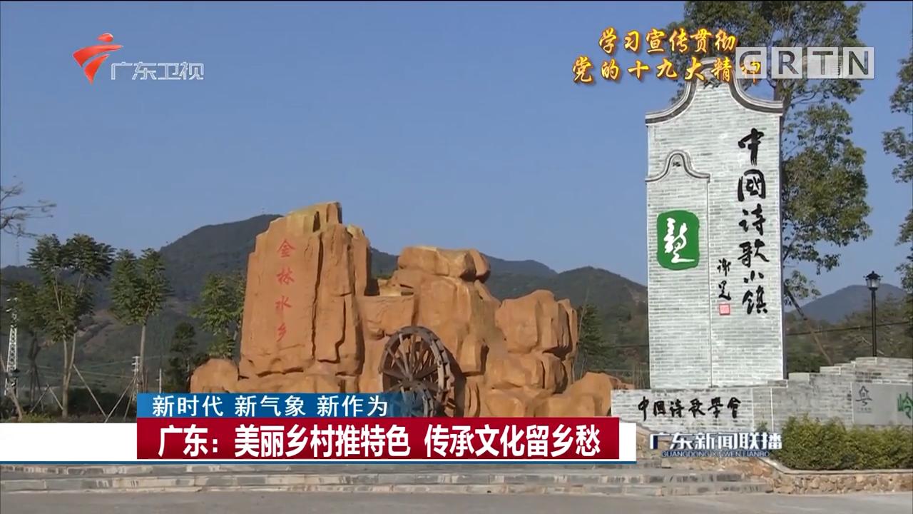 广东:美丽乡村推特色 传承文化留乡愁
