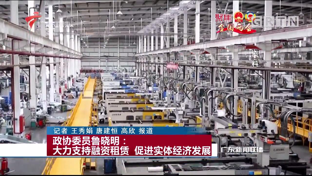 政协委员鲁晓明:大力支持融资租赁 促进实体经济发展
