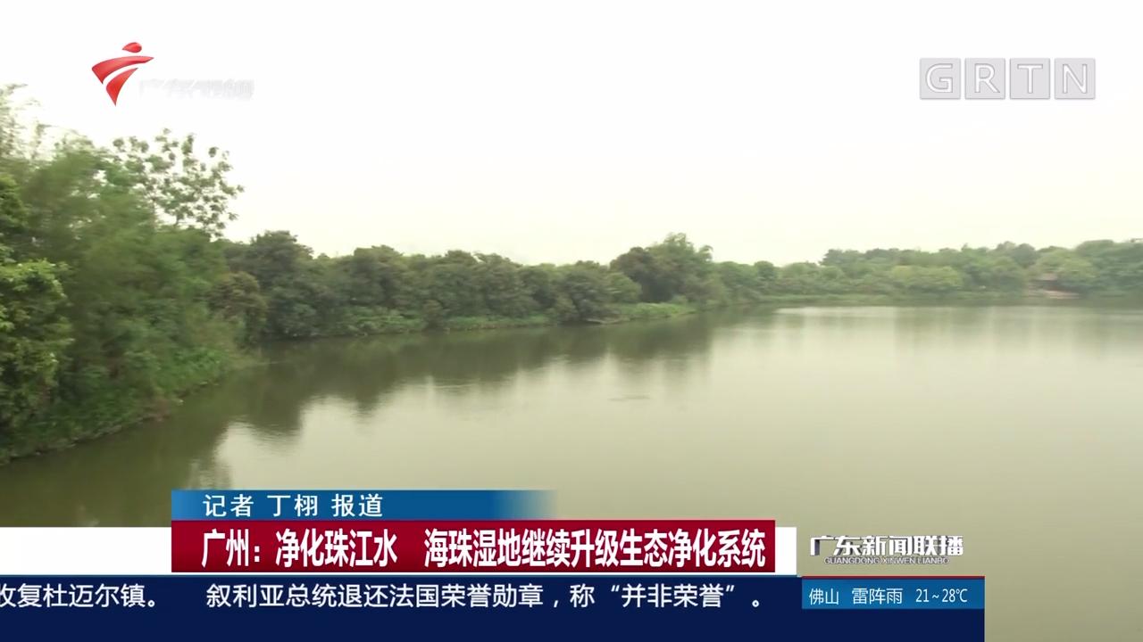 广州:净化珠江水 海珠湿地继续升级生态净化系统