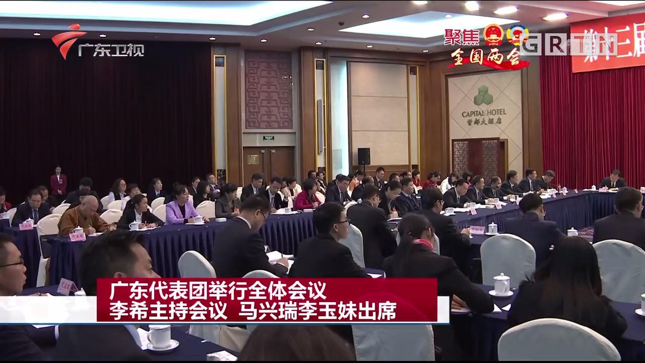 广东代表团举行全体会议 李希主持会议 马兴瑞李玉妹出席