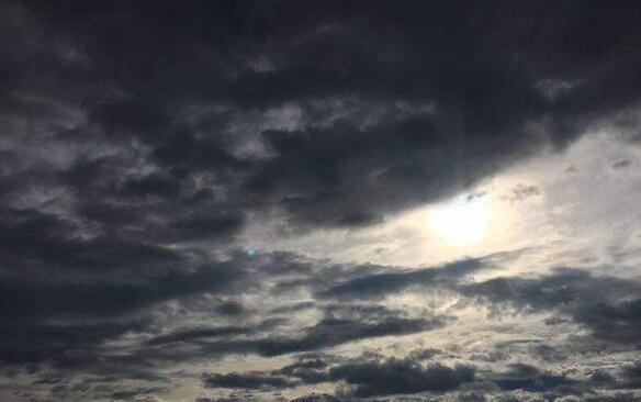 """关注台风""""贝碧嘉"""" 预计将于14日晚登陆 带来狂风暴雨"""