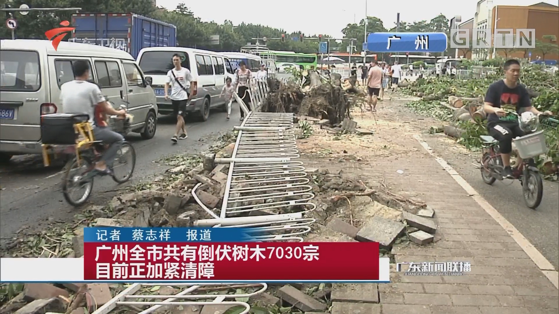 广州全市共有倒伏树木7030宗 目前正加紧清障