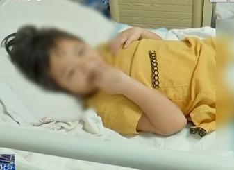 女童被蛇咬伤 各界筹款近十万