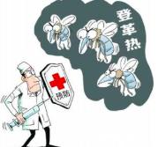 注意防蚊!广东省已经进入登革热流行高峰期