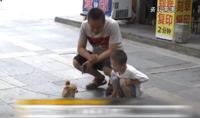 男婴接触宠物后左眼不适 医生手术取出11条虫子