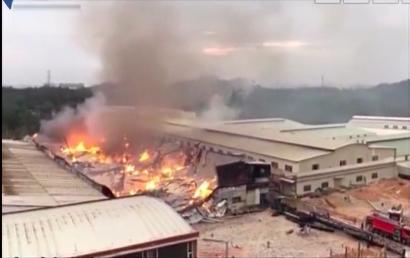 家具厂房突然起火 幸无人受伤