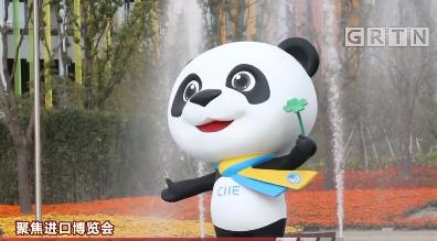 聚焦进口博览会:进博会开幕!见中国,见世界,见未来