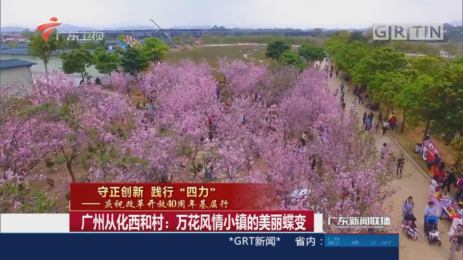 广州从化西和村:万花风情小镇的美丽蝶变