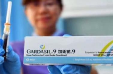 预计元旦后 HPV九价疫苗供给量成倍增加