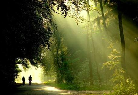 感受莽山国家森林公园