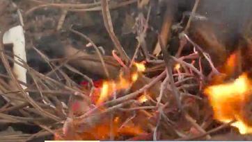 佛山南海:露天烧烤木炭爆燃 女子面部多处烫伤