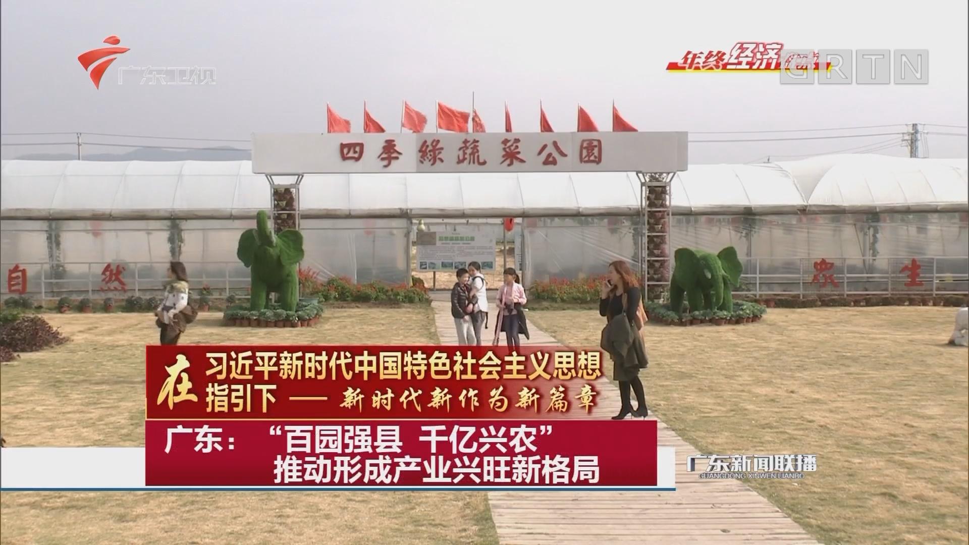 """广东:""""百园强县 千亿兴农"""" 推动形成产业兴旺新格局"""