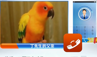 湖南长沙:男子全身发热住进 竟和鹦鹉有关?