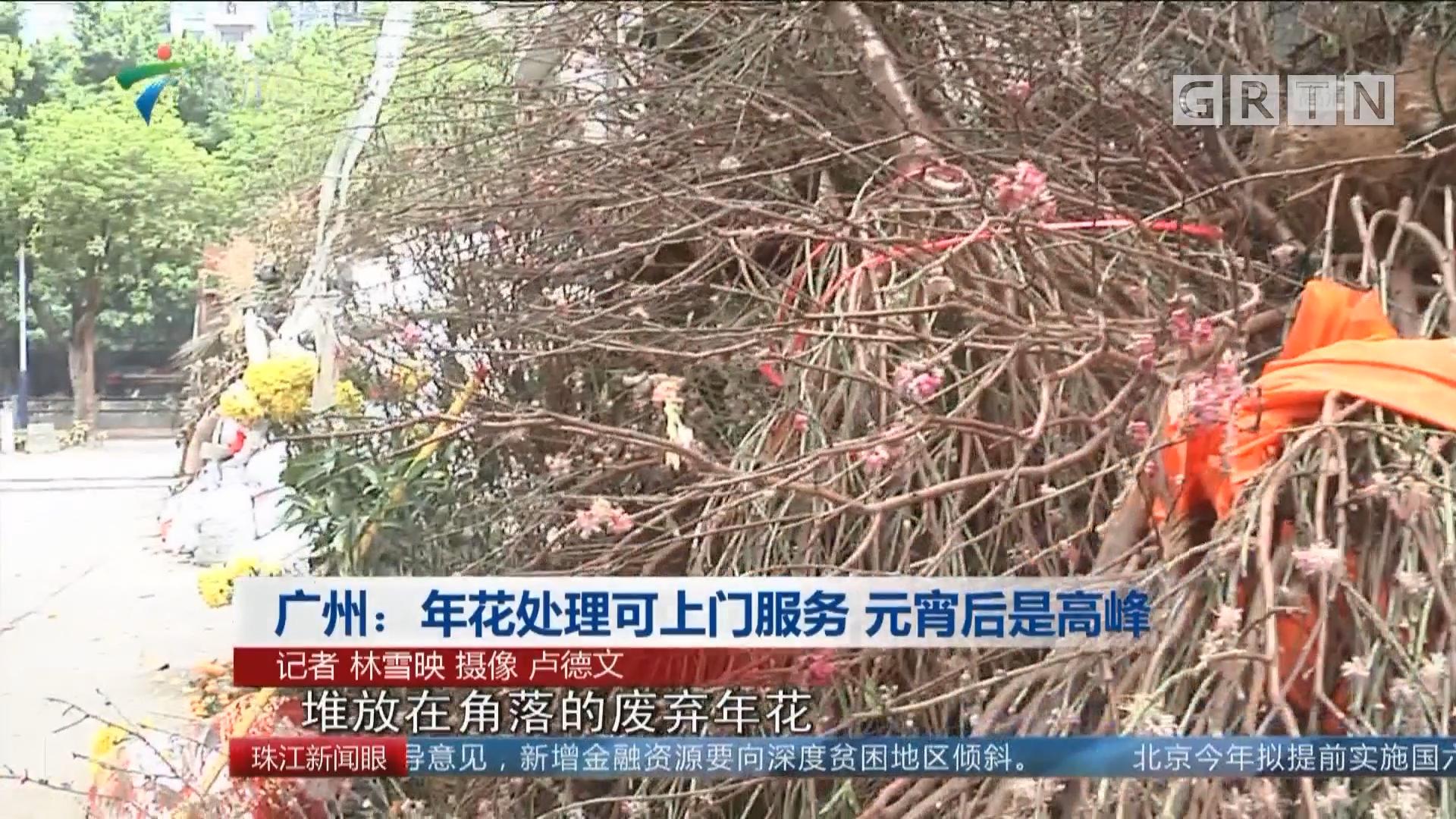广州:年花处理可上门服务 元宵后是高峰