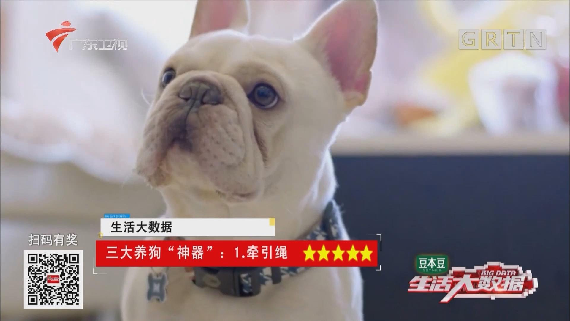 """三大养狗""""神器"""":你的狗狗有吗?"""