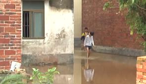 [HD][2019-04-14]今日关注:吴川:暴雨来袭积水难退 村民房屋受浸