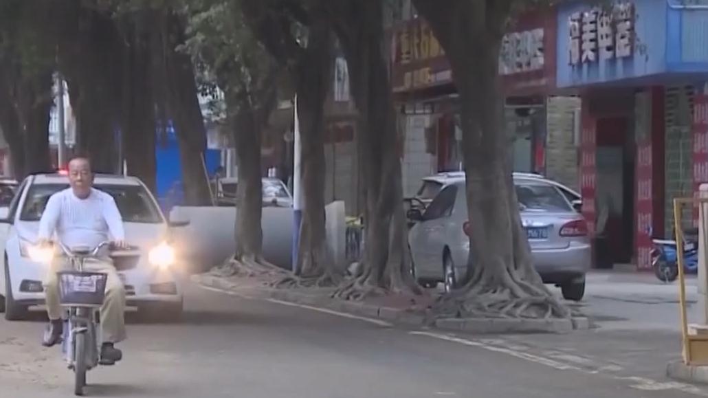 害赌徒家破人亡 深圳涉黑赌博团伙64人被抓