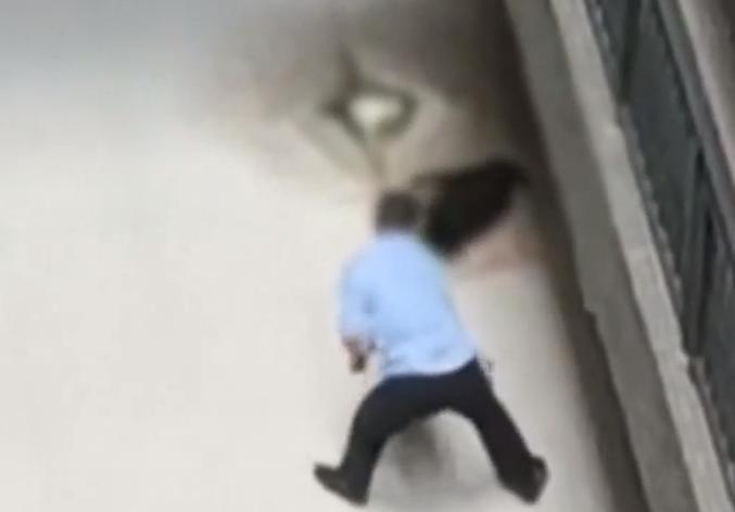 广州:保安杖毙流浪狗 引学生不满