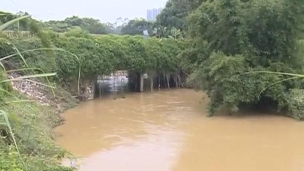 村民求助:连续三年水浸 罪魁祸首是一条桥