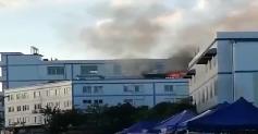 [HD][2019-06-08]今日關注:紡織廠火災 記者采訪遭粗暴推撞
