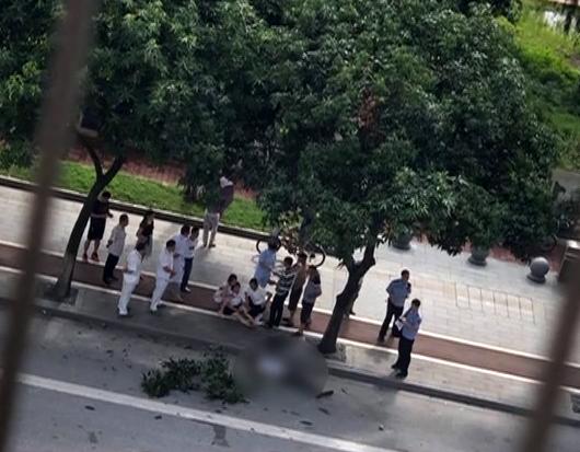 广州:疑为摘绿化芒 一男子摔下不幸身亡