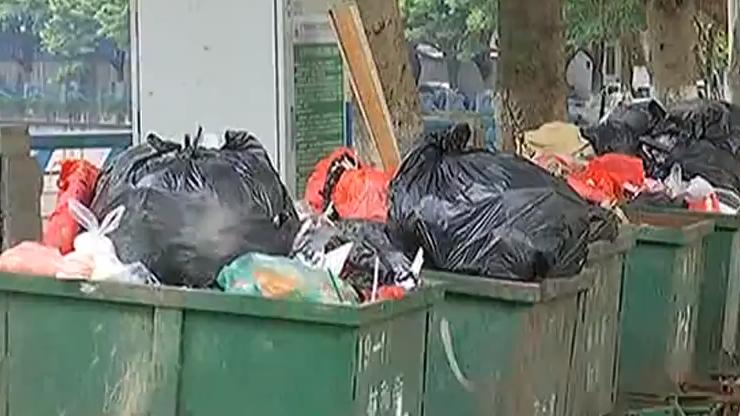 广州垃圾分类来真的