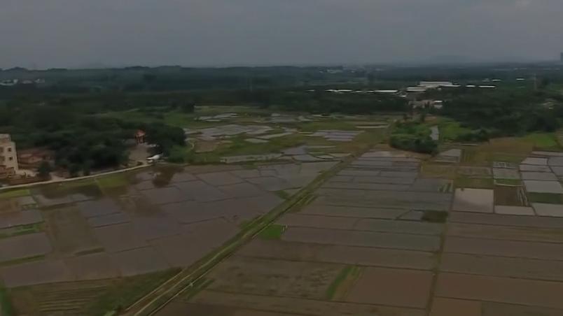 [HD][2019-07-18]今日关注:茂名:工业园排放废水 农田受污染多年