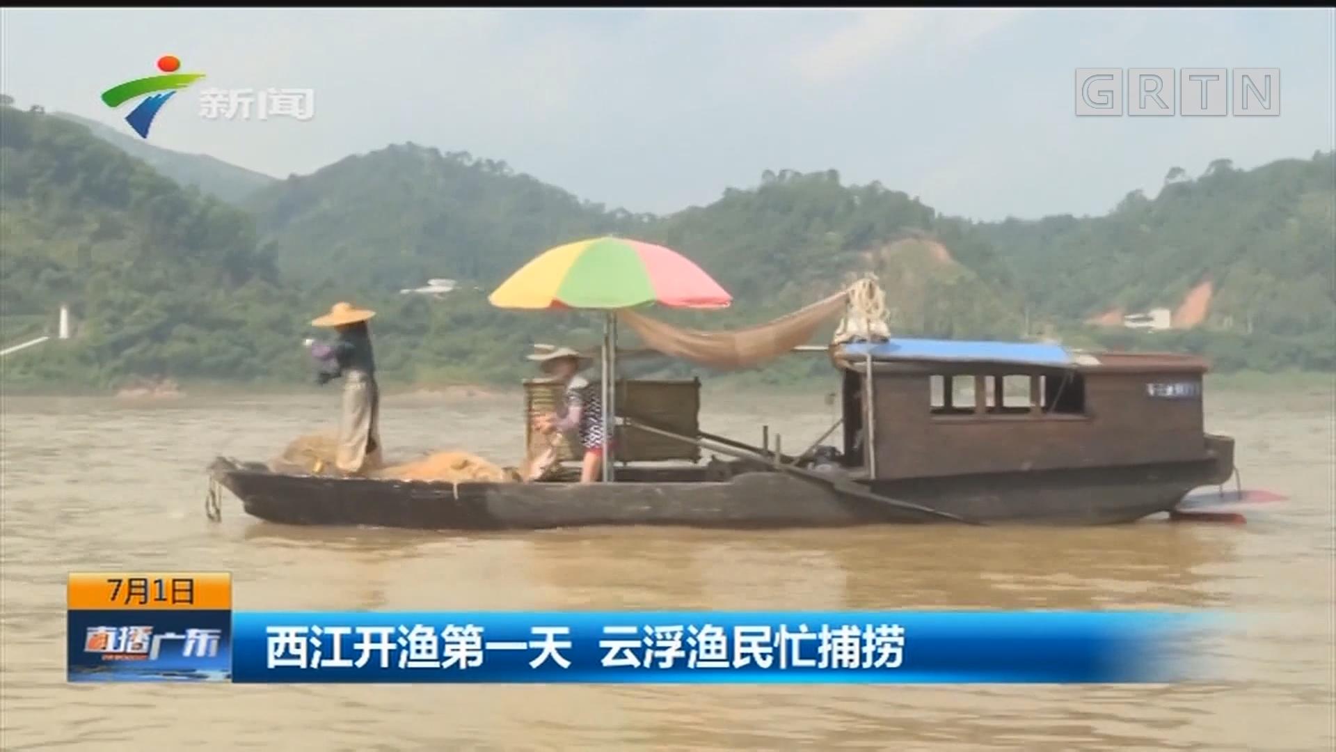 西江开渔第一天 云浮渔民忙捕捞