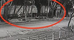 [HD][2019-07-27]今日关注:深圳:赤膊男半夜街头暴打女子 警方介入调查