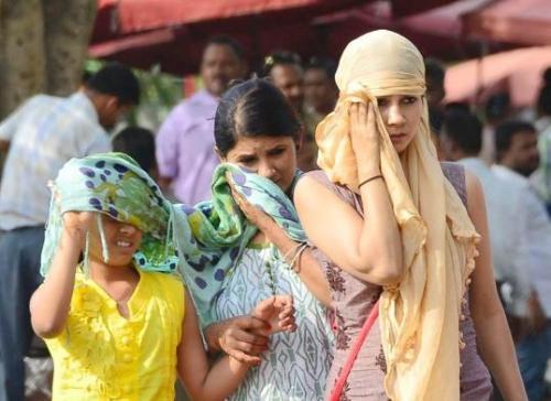 关注全球高温天气:印度突破50℃ 超百人因高温死亡